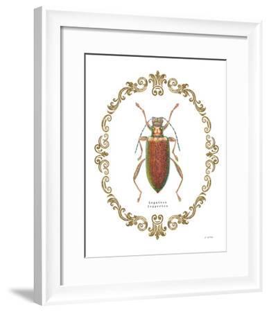 Adorning Coleoptera VI-James Wiens-Framed Art Print