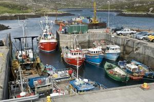Boats In a Harbour by Adrian Bicker