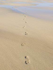 Footprints In Sand by Adrian Bicker
