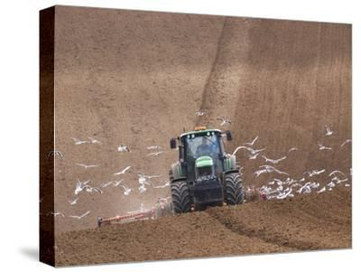 Sowing a Cereal Crop In Mid March