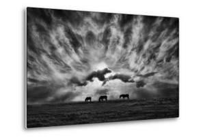 Against an Angry Sky by Adrian Campfield