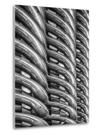 Rib Cage in Mono by Adrian Campfield