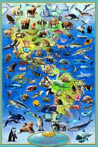 100 Endangered Species by Adrian Chesterman