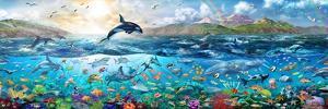Ocean Panorama by Adrian Chesterman