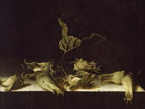 Still Life with Hazel-Nuts, 1696 by Adrian Coorte