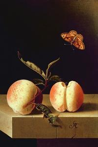 Still Life with Peaches by Adrian Coorte