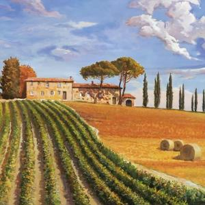 Colline Toscane by Adriano Galasso