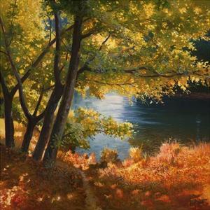 Radura sul fiume by Adriano Galasso