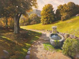 Sentiero tra i boschi by Adriano Galasso