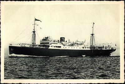 Adriatica Line, Dampfschiff San Marco, Paquebot--Giclee Print