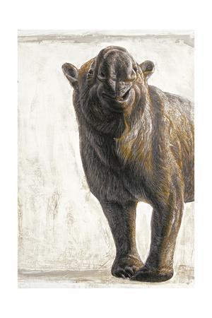 Diprotodon Optatum, the Largest known Marsupial, Grewto Rhinoceros Size