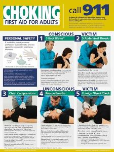 Adult Choking Poster