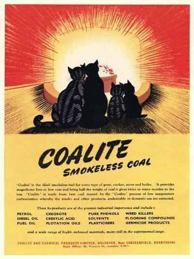 Advert for 'Coalite' Smokeless Coal--Giclee Print