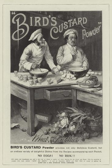 Advertisement, Bird's Custard Powder--Giclee Print