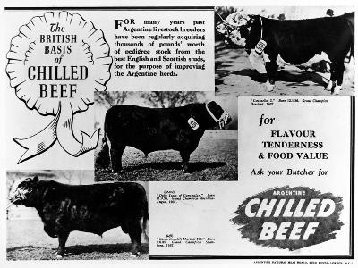 Advertisement by the Argentine Meat Board--Photographic Print
