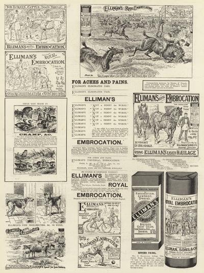 Advertisement, Elliman's Royal Embrocation--Giclee Print