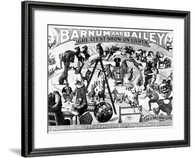 Advertisement for Barnum and Bailey's Circus, 1897--Framed Photographic Print