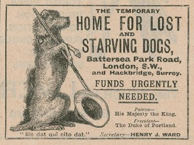 Advertisement for Battersea Dogs Home--Giclee Print