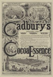 Advertisement for Cadbury's Cocoa Essence