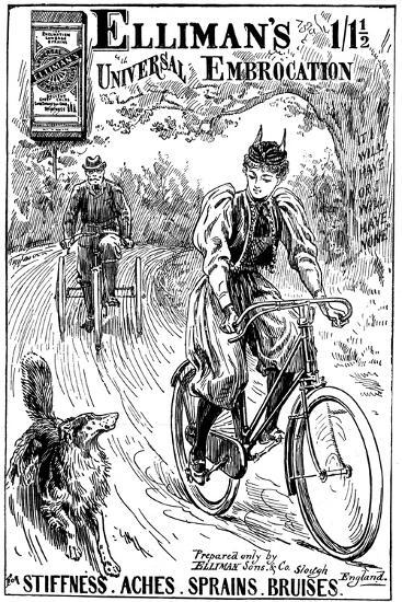 Advertisement for Elliman's Universal Embocation, 1895--Giclee Print