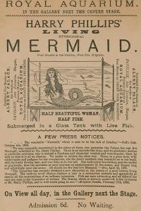 Advertisement for Harry Phillips' Living Mythological Mermaid