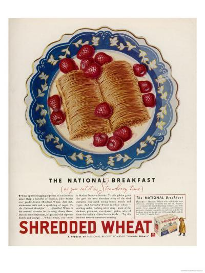 Advertisement for Shredded Wheat Promoting It as the National Breakfast--Giclee Print