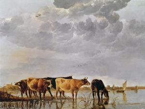 Cows in a River, C.1650 by Aelbert Cuyp