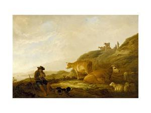 Seated Shepherd with Cows and Sheep in a Meadow, 1644 (Oil on Oak Panel) by Aelbert Cuyp