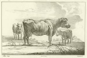 Three Cows by Aelbert Cuyp