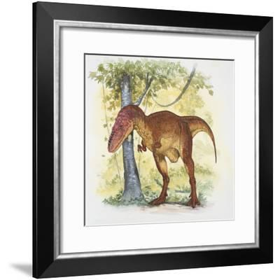 Aeolosaurus dinosaur eating leaves of a tree (Aeolosaurus rionegrinus)--Framed Photographic Print