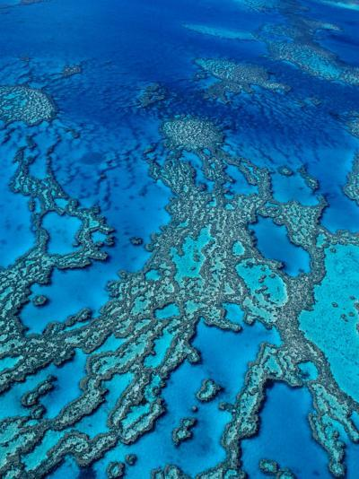 Aerial of Hardy Reef Offshore from Whitsundays Islands-Philip Game-Photographic Print