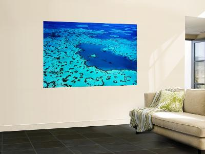 Aerial of Heart-Shaped Reef at Hardy Reef, Near Whitsunday Islands-Holger Leue-Wall Mural