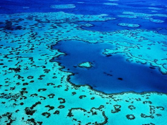 Aerial of Heart-Shaped Reef at Hardy Reef, Near Whitsunday Islands-Holger Leue-Photographic Print