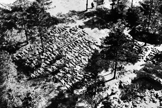 Aerial Photograph of Excavated Bodies from the Mass Graves in Katyn Forest, 1943--Photographic Print