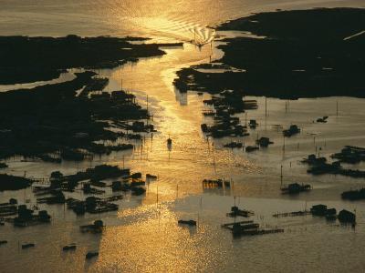 Aerial Shot, Tangier Island, Chesapeake Bay, Virginia-Skip Brown-Photographic Print