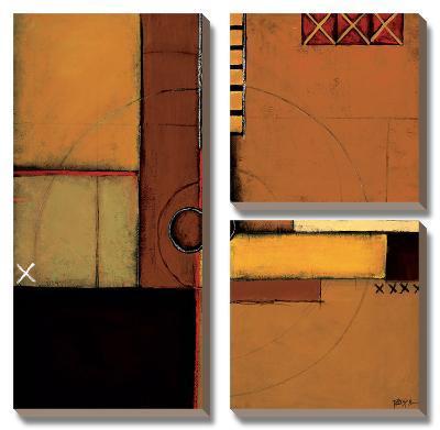 Aerial View I-Patrick St^ Germain-Canvas Art Set