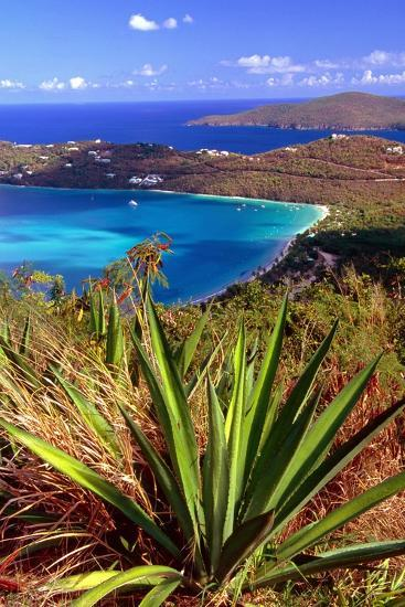 Aerial View, Magens Bay, St Thomas, USV-George Oze-Photographic Print