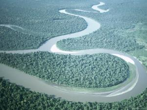 Aerial View of Amazon River and Jungle, Brazil