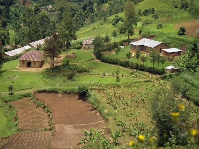 Aerial View of Children Leaving School and Terraced Fields, Kabale, Uganda, Africa-Poole David-Photographic Print