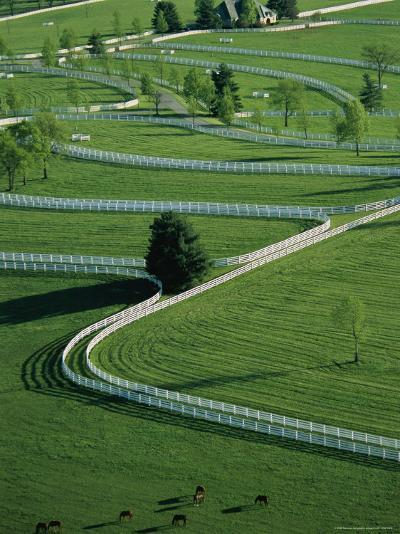 Aerial View of Donamire Farms Fenced Pastures-Melissa Farlow-Photographic Print