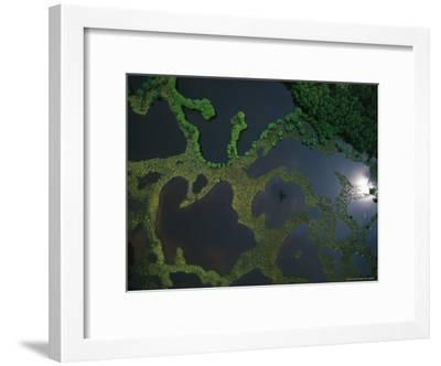 Aerial View of Flooded Lands with Sunlight Reflection and Plane Shadow-Michael Nichols-Framed Photographic Print
