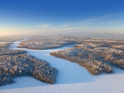 Aerial View of Forest Plain in Time of Sunny Winter Day.-Vladimir Melnikov-Photographic Print