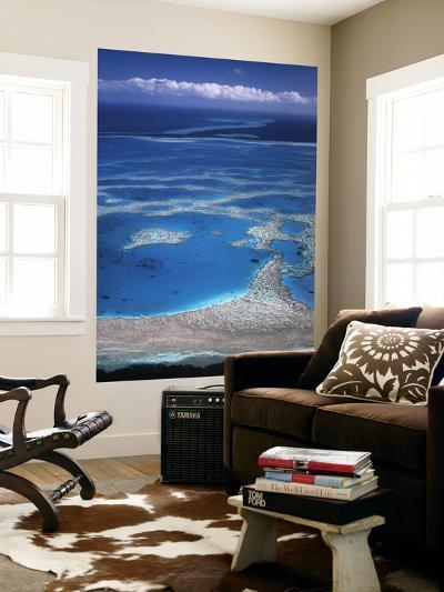 Aerial View of Great Barrier Reef, Queensland, Australia-Danielle Gali-Wall Mural