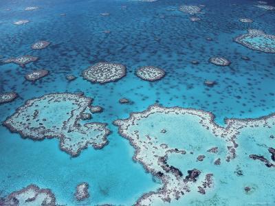 Aerial View of Great Barrier Reef, Queensland, Australia-Jurgen Freund-Photographic Print
