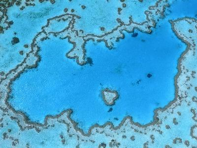 Aerial View of Great Barrier Reef-Theo Allofs-Photographic Print