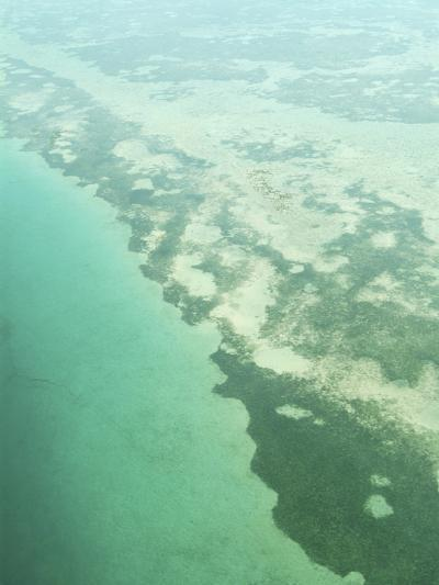 Aerial View of Green Seashore and Island--Photographic Print