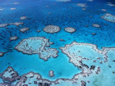 Aerial View of Hardy Reef, Great Barrier Reef and Sea, Queensland, Australia-Jurgen Freund-Photographic Print