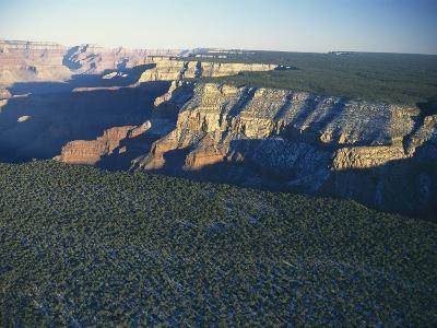 Aerial View of Kaibab National Forest at the Grand Canyon Rim-Norbert Rosing-Photographic Print