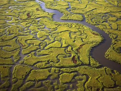 Aerial View of Marshes and Waterways Near Georgia's Sea Islands-Michael Melford-Photographic Print
