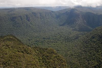 Aerial View of Mountainous Rainforest in Guyana, South America-Mick Baines & Maren Reichelt-Photographic Print